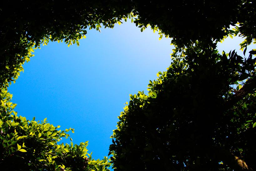Cas Gasi, santuario green de Ibiza