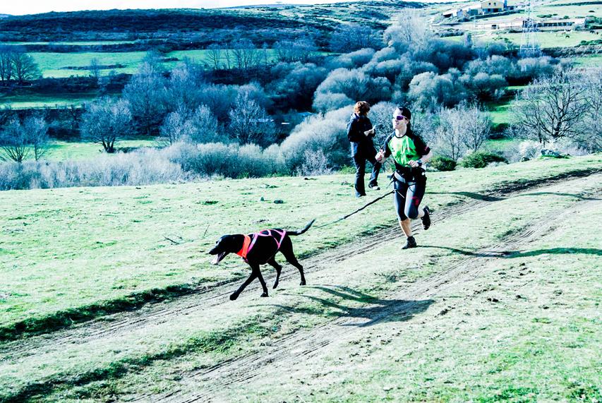 Canicross: Vuela con tu perro