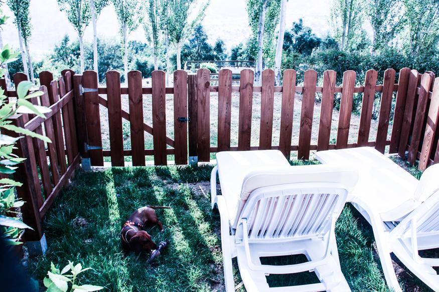 Eros jugando en el jardín de nuestra suite.