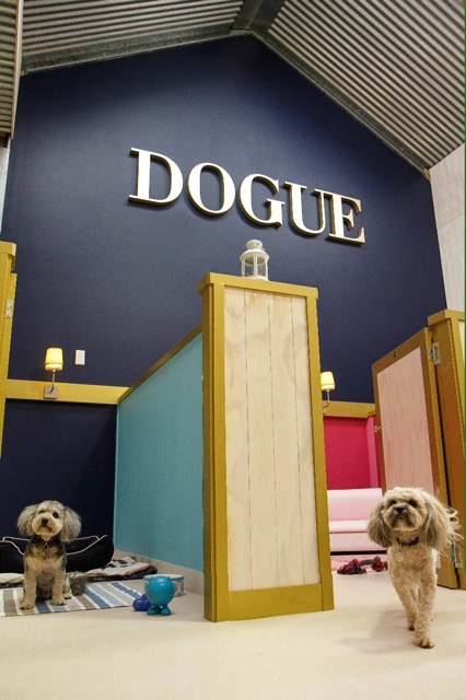 DOGUE Country Retreat rooms.