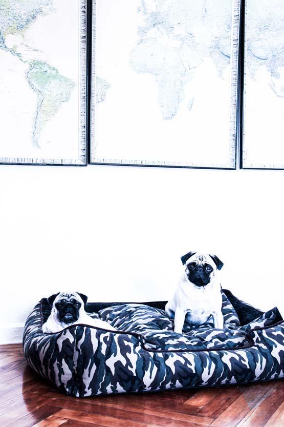 Sobre una cama de camuflaje, Tico y Lupe. Y arriba, el mundo.