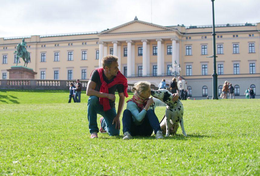 Requisitos para viajar con tu perro por Europa