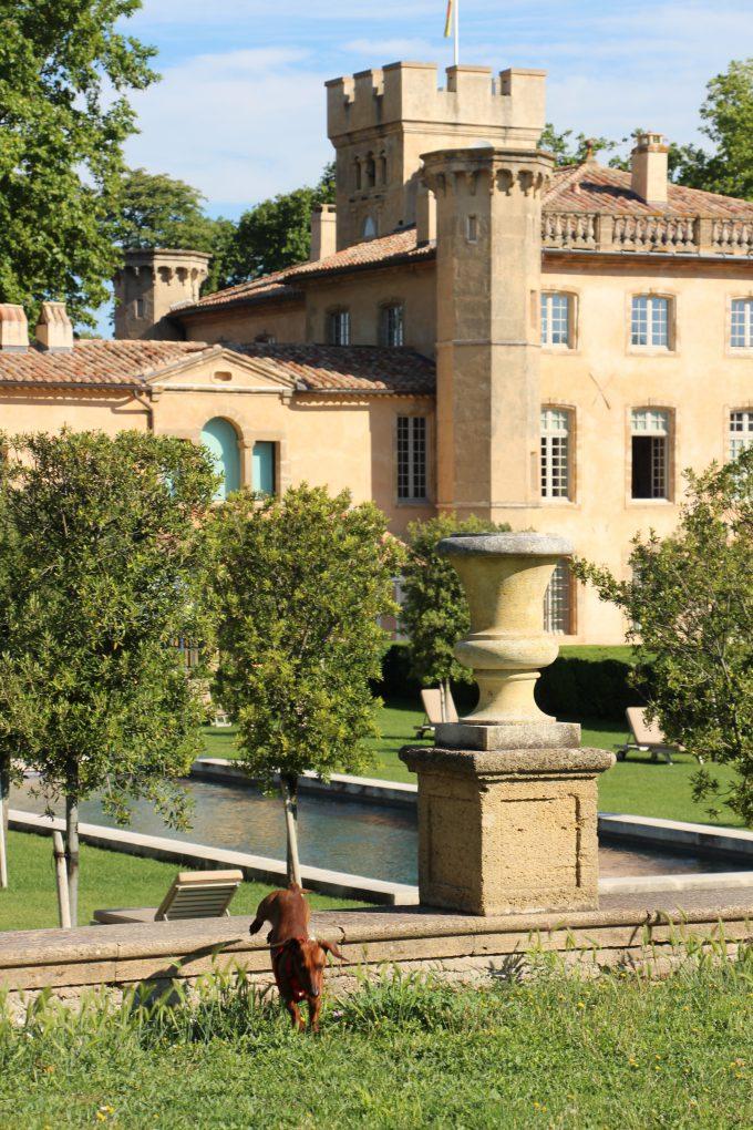Como Eros está muy bien educado, fue bienvenido en el château.