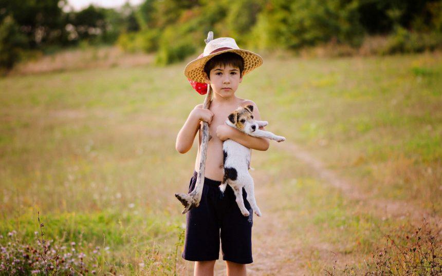 En el Día del Niño, visita un refugio y adopta un perro