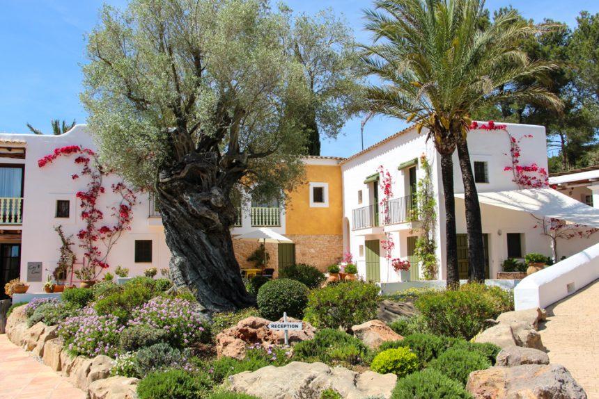 Cas Gasi, la finca payesa más cool de Ibiza