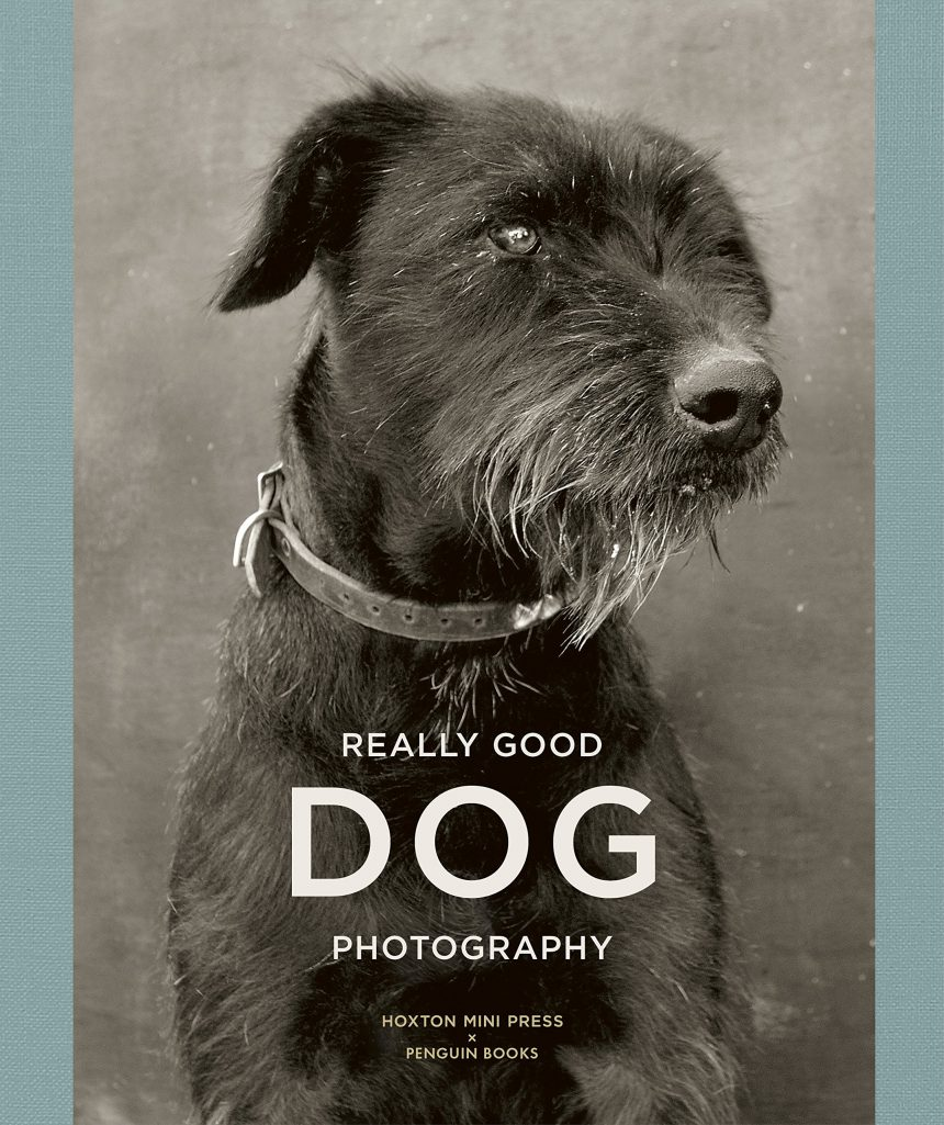 Really Good Dog Photography, el libro para regalar