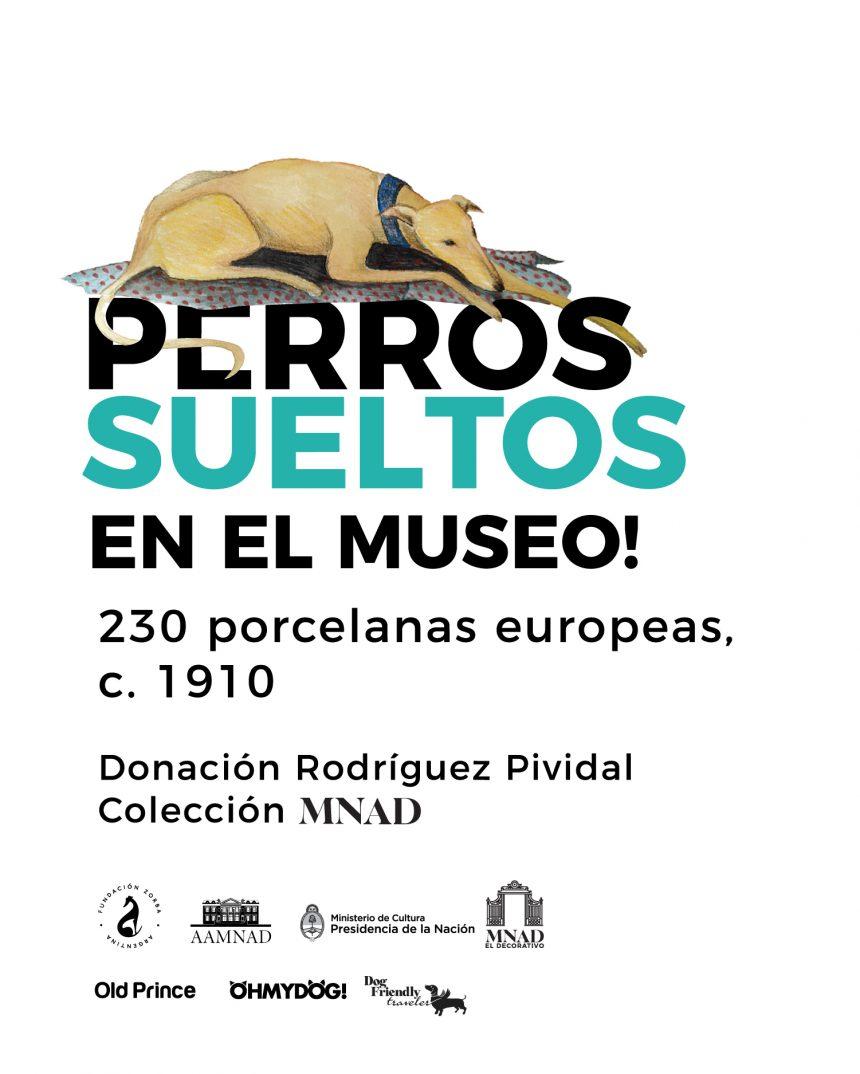 Perros sueltos en el Museo: expo inédita en Buenos Aires