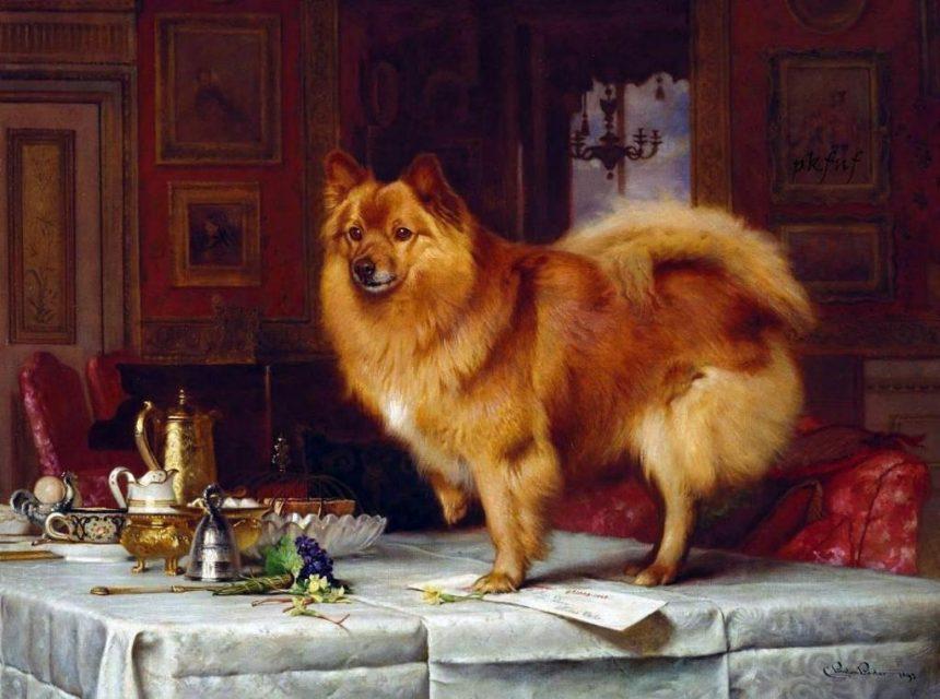 Barber y el afecto por los perros en la Casa Real británica |