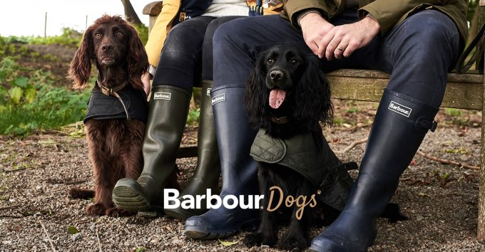 Barbour dogs