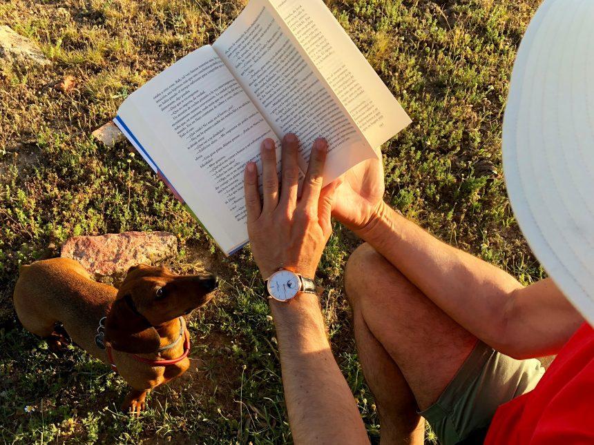 'Una vida de perros', la nueva obra de Estefanía Salyers