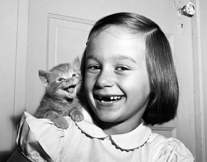 Walter Chandoha marcó la diferencia fotografiando gatos