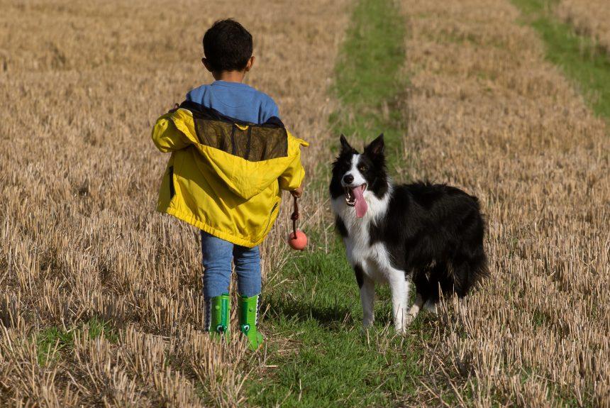 El perro, el apoyo emocional para los niños