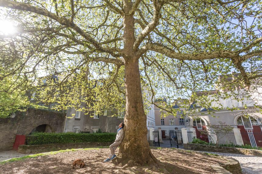 Catedral de Nantes: compartimos nuestro dolor