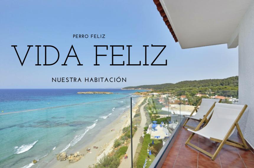 25 alojamientos dog friendly para vivir Menorca