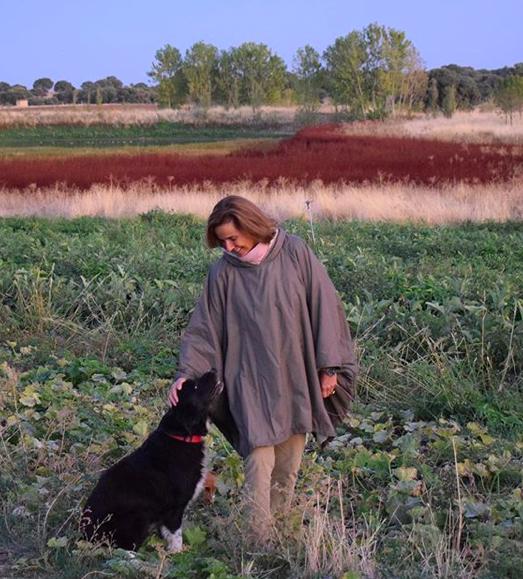 Corcho, príncipe de la granja ecológica integral en España, ha desaparecido