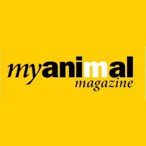 MY ANIMAL MAGAZINE 11/2017